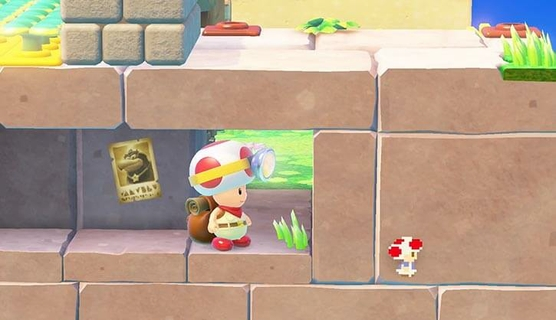 Can You Spot The Pixel Toad?