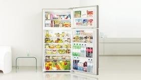 Mega-Size Refrigerator
