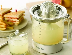 Simple Citrus Juicer