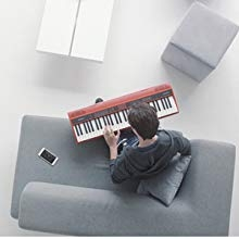 استمتع بأداء بيانو حقيقي موفرة للمساحة